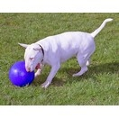 Boomer Ball pour chien - image 2