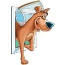 Porte pour chiens original staywell trappe chati re et - Trappe de porte pour chien ...
