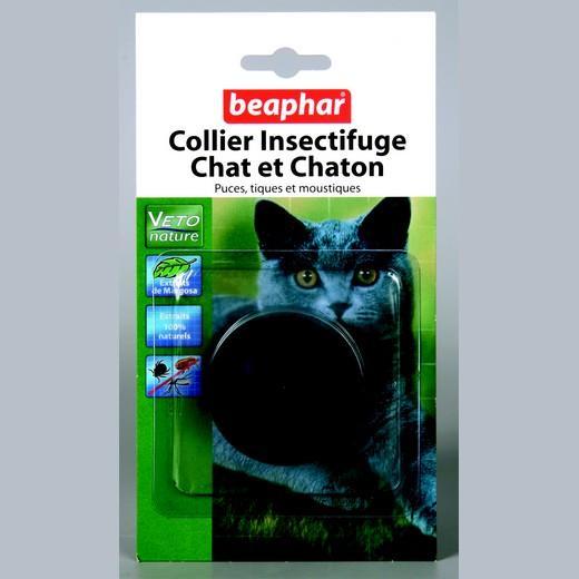 Collier insectifuge naturel pour chat et chaton - Traitement anti puce chaton ...