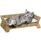 Sofa avec coussin