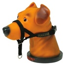 Harnais easy walk petsafe education laisses colliers - Fabriquer panier pour chien ...