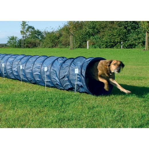 Training Dog Tunnel