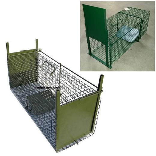 trappe de capture pour chat morin france cages et mat riel de capture d 39 animaux pour la. Black Bedroom Furniture Sets. Home Design Ideas