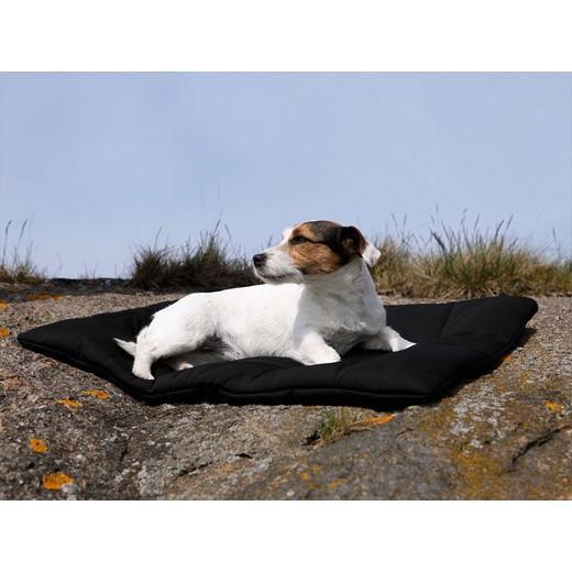 Tapis pour chien en tissu th rapeutiques caisses et tapis pour loisirs et t - Tapis gazon pour chien ...