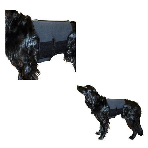 ceinture lombaire pour chien en tissu th rapeutique. Black Bedroom Furniture Sets. Home Design Ideas