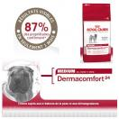 Medium Dermaconfort - Royal Canin