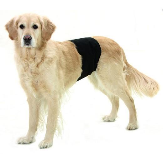 Slip d incontinence pour m les d jections urine incontinence ramasse crottes chiens chenil - Couche pour chien femelle ...