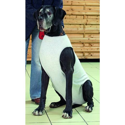 Body protection chien bl ss handicap levage et bandage morin soin et sant du chien - Fabriquer un harnais pour chien ...