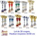 Lot de 30 coupes assorties
