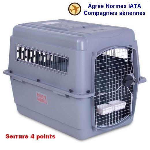 cage de transport vari sky kennel pour avion morin caisses pour le transport et le voyage en. Black Bedroom Furniture Sets. Home Design Ideas