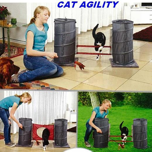 Jouet chat cat agility tapis et jouets d 39 veil morin for Maison jouet exterieur