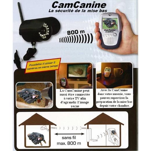 Caméra sécurité. Chenils en kit pour chien, parc à chien