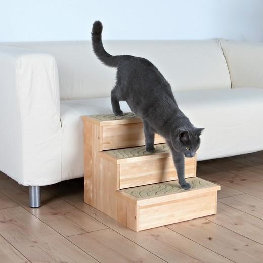 escalier bois pour chien et chat chien bless handicap. Black Bedroom Furniture Sets. Home Design Ideas