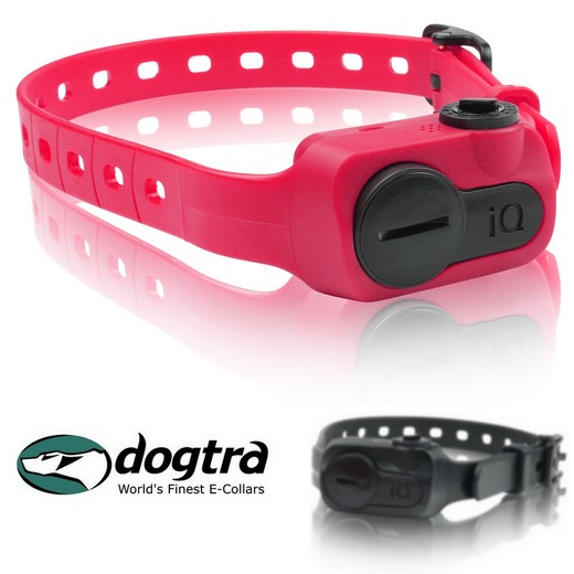 promotion Collier anti aboiement Dogtra iQ Ultra Compact