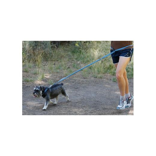 laisse pour chien en nylon extensible roamer leash ruff wear sellerie en nylon laisses. Black Bedroom Furniture Sets. Home Design Ideas