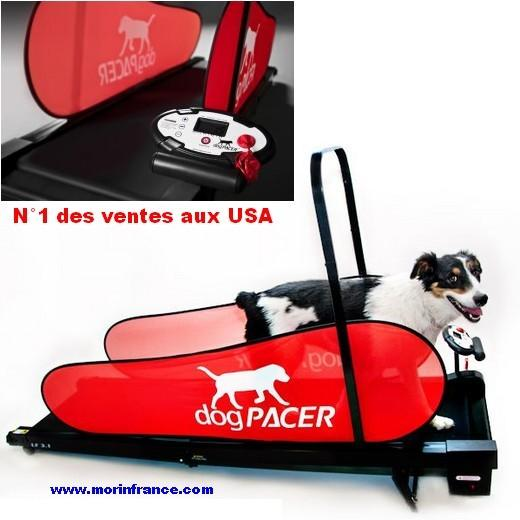 tapis roulant dog pacer home trainer pour chien entrainement et r ducation du chien bless ou. Black Bedroom Furniture Sets. Home Design Ideas