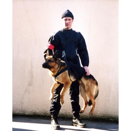 harnais de portage intervention pour chien chien bless handicap levage et bandage morin. Black Bedroom Furniture Sets. Home Design Ideas