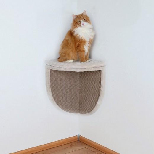 parcours mural pour chat notre projet qui se nomme le chatman caf est un bar chats qui sera. Black Bedroom Furniture Sets. Home Design Ideas