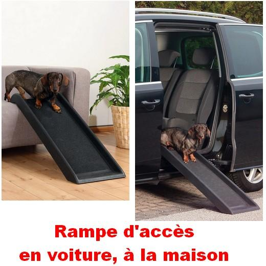 Rampe d 39 acc s pour chien chien bless handicap levage for Rampe d acces handicape