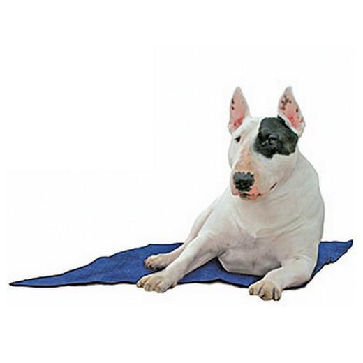Tapis rafraichissant pour chien morin tous les accessoires pour le couchage des chiens et chiots - Tapis rafraichissant pour chien ...