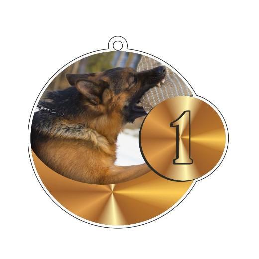Fabuleux médaille récompense podium concours rci - Pour le sport canin avec  AX53