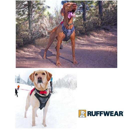 brush guard ruff wear protection du chien pour harnais et. Black Bedroom Furniture Sets. Home Design Ideas