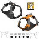 Harnais Front Range pour chien - Ruffwear
