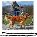 Laisse bandoulière pour vélo ou jogging