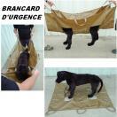 Civière d'urgence pour évacuation d'un chien blessé