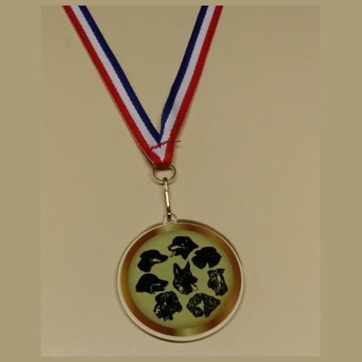 Fabuleux Médaille et récompense pour concours sport canin : têtes de chiens AX53