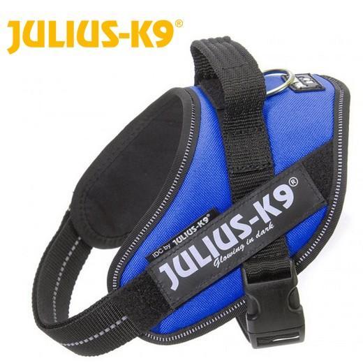 harnais icd power julius k9 bleu pour chien accessoires. Black Bedroom Furniture Sets. Home Design Ideas