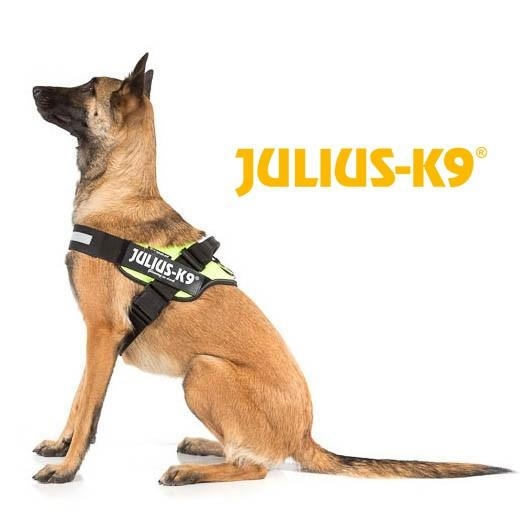 julius k9 harnais neon icd power pour chien accessoires. Black Bedroom Furniture Sets. Home Design Ideas