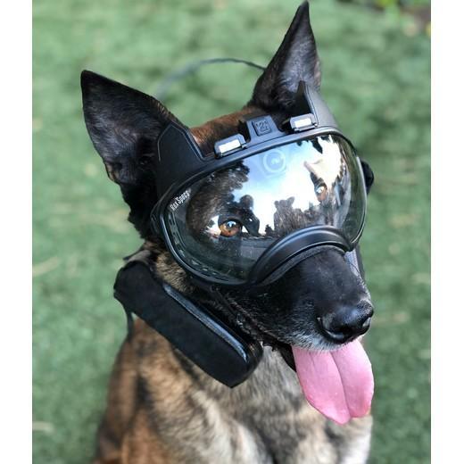 Caméra K9 vision, caméra opérationnelle pour chien. MORIN FRANCE Cyno.  Accessoires pour forces de l'ordre et la sécurité