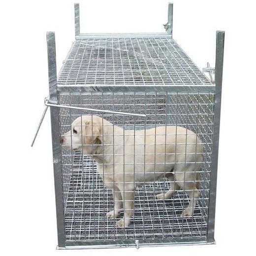 Trappe pi ge capture pour chien errant morin fabricant distributeur d 39 accessoires pour chien - Trappe de porte pour chien ...