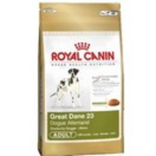 great dane dogue allemand royal canin aliments pour chien et chiots croquettes pour la. Black Bedroom Furniture Sets. Home Design Ideas