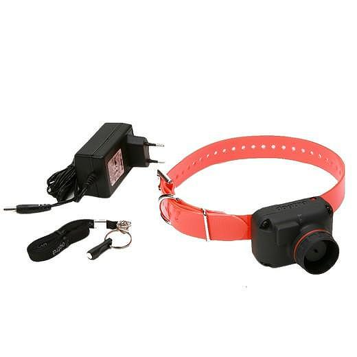 Collier Pour Chien Beeper Stb
