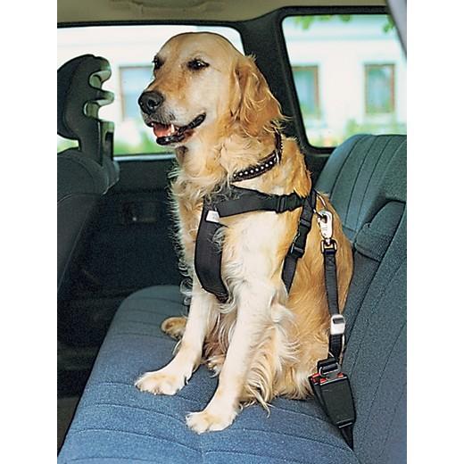 Harnais de sécurité auto. Sac à dos pour chien, fourre tout, sac de ... ca03c4a94ed9