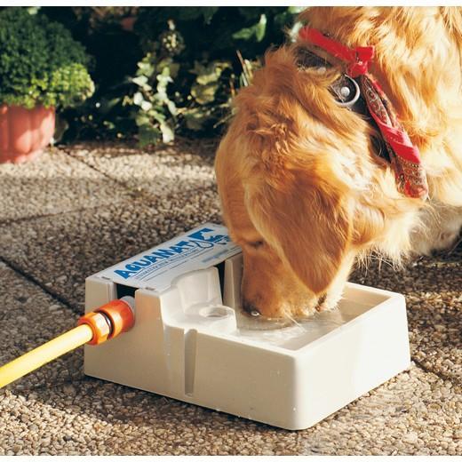 aquamat abreuvoir automatique pour chiens morin accessoires et alimentation pour chiens et. Black Bedroom Furniture Sets. Home Design Ideas